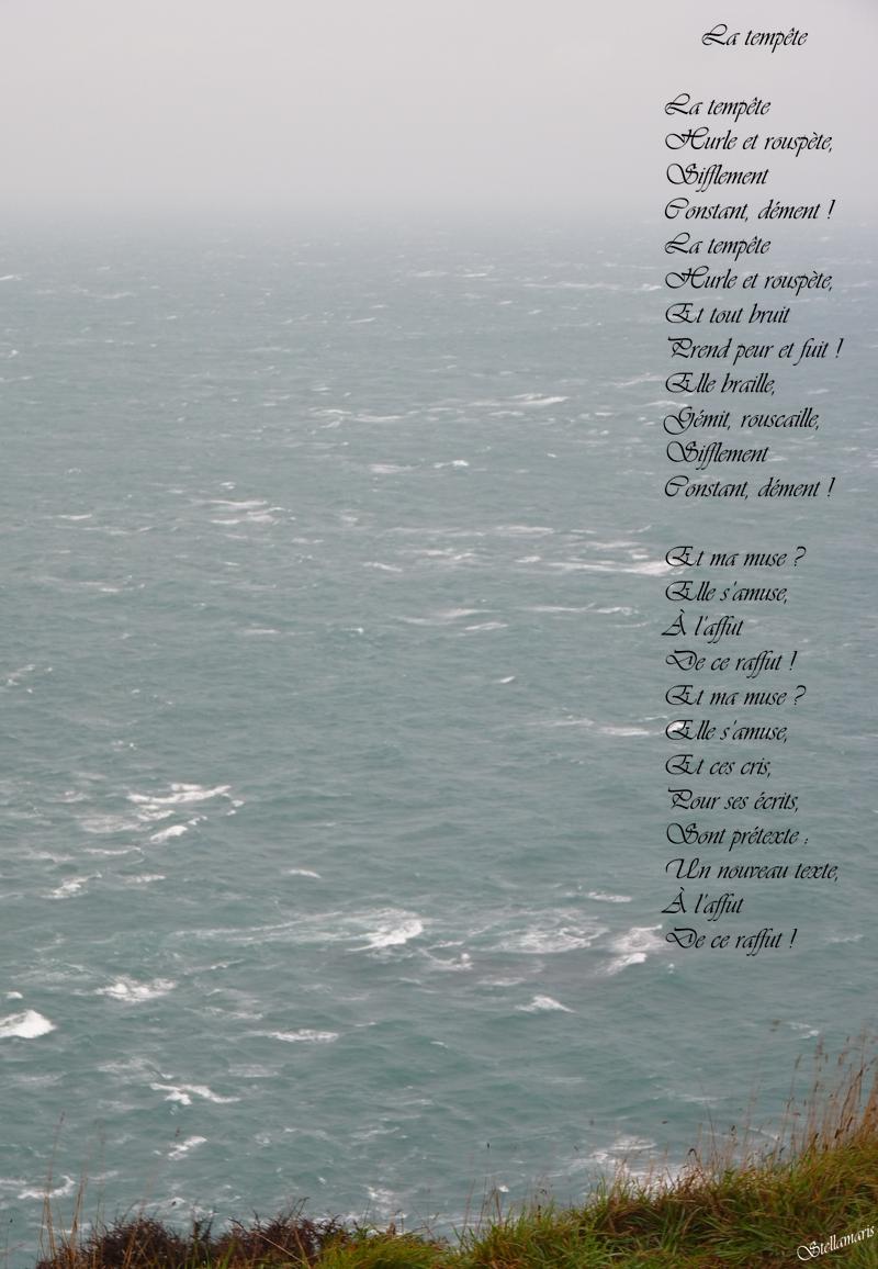 La tempête / / La tempête / Hurle et rouspète, / Sifflement / Constant, dément ! / La tempête / Hurle et rouspète, / Et tout bruit / Prend peur et fuit ! / Elle braille, / Gémit, rouscaille, / Sifflement / Constant, dément ! / Et ma muse ? / Elle s'amuse, / À l'affut / De ce raffut ! / Et ma muse ? / Elle s'amuse, / Et ces cris, / Pour ses écrits, / Sont prétexte : / Un nouveau texte, / À l'affut / De ce raffut ! / / Stellamaris