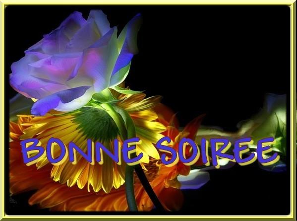 BONNE SOIREE DE SAMEDI... A DEMAIN 63c8dd70-27a7c0d