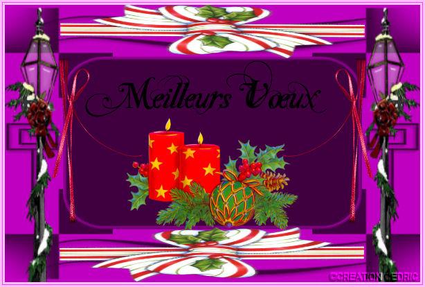 les coucou des invite de janvier 2011 101231070623833120-2408d3f